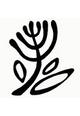 Logo GenAmi